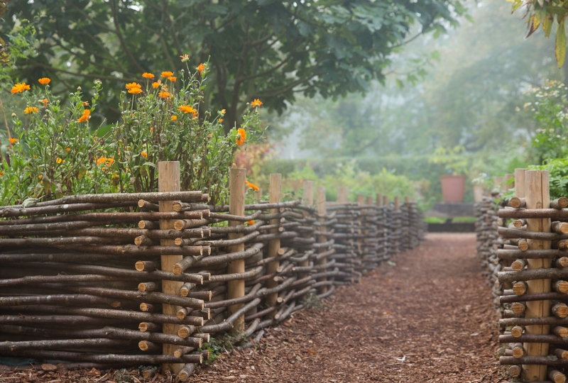 Photo du jardin des 9 carrés de l'abbaye de Royaumont, bac fleuri pendant le brouillard