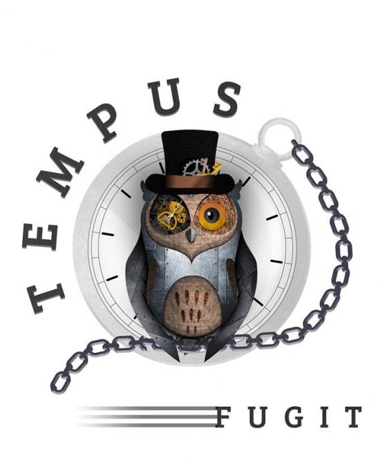 Logo de l'escape game tempus fugit représentant un hiboux à lunettes et à chapeau
