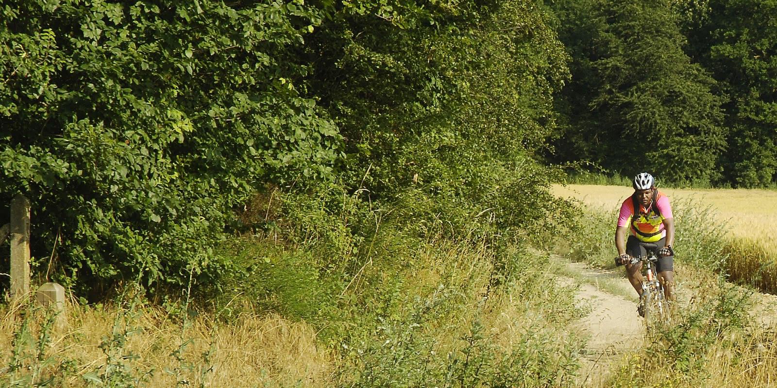 Photo d'un cycliste au milieu des champs de blé du Vexin française