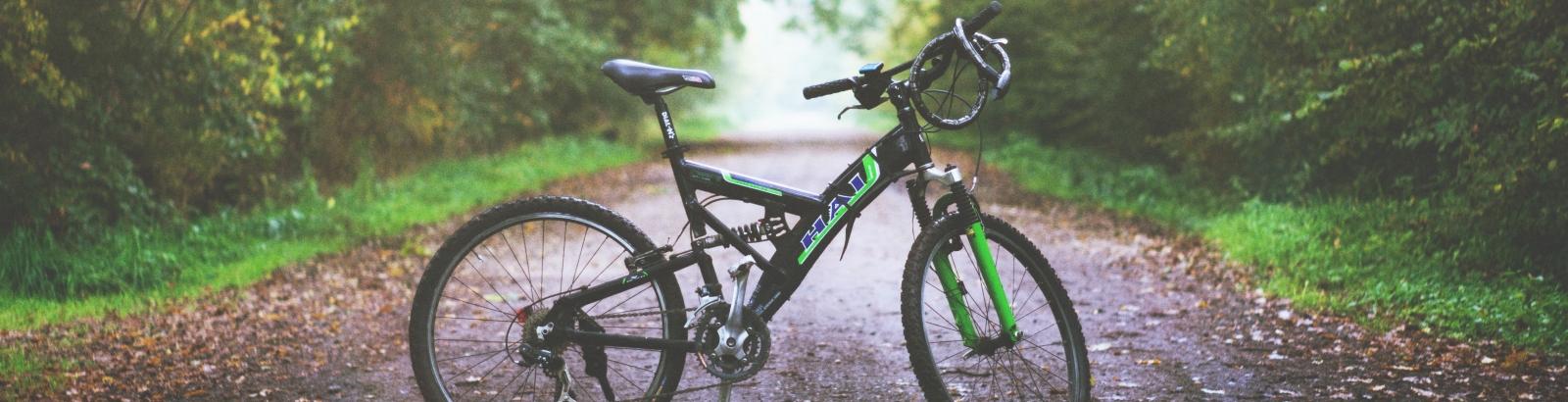 Photo d'un vélo sur un chemin en pleine forêt