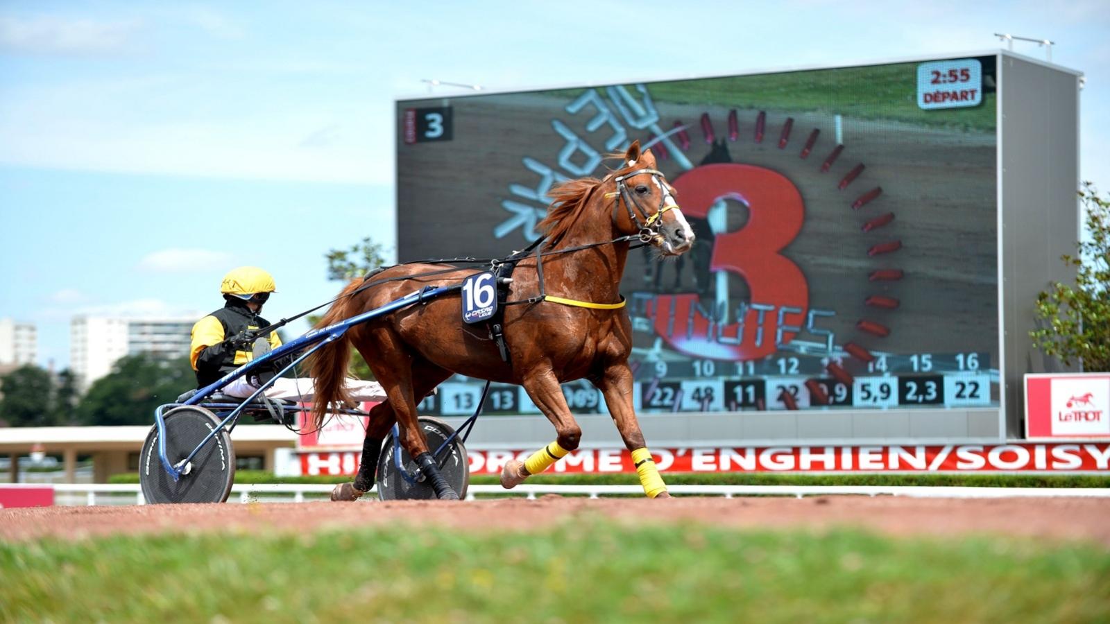 Photo de l'hippodrome d'Enghien-les-Bain montrant un cheval en pleine course
