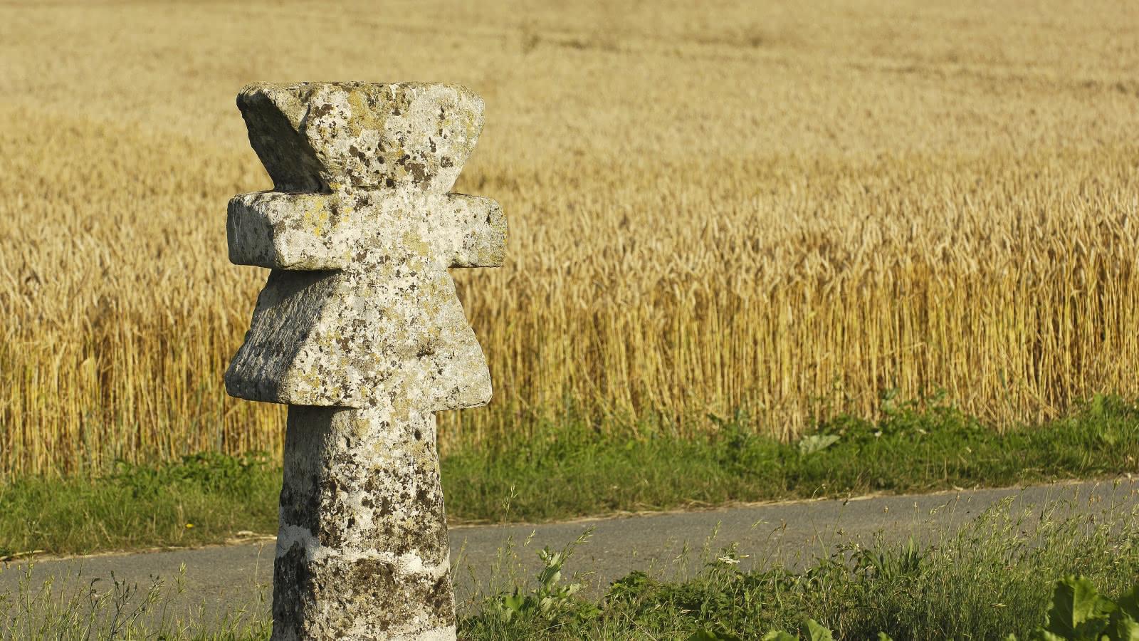 Photo de la Croix pattée de Guiry en premier plan et d'un champ de blé au second