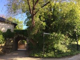 Jardins du château d'Auvers-sur-Oise