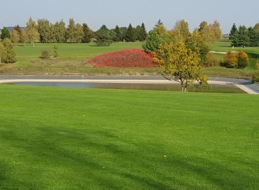 Golf Blue Green Bellefontaine