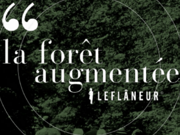 Affiche foret augmentée Montmorency