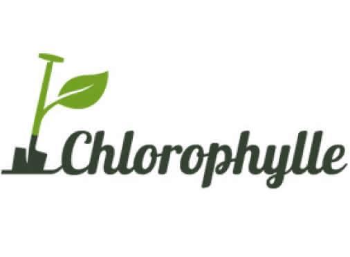 Clorophylle
