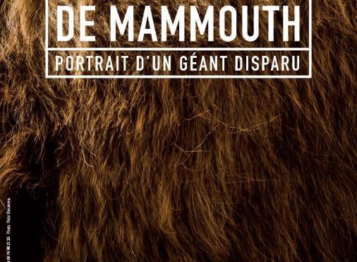Exposition Un temps de mammouth
