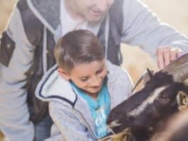 Photo d'un père et son fils caressant les biquettes de la ferme d'Ecancourt à Jouy-le-Moutier