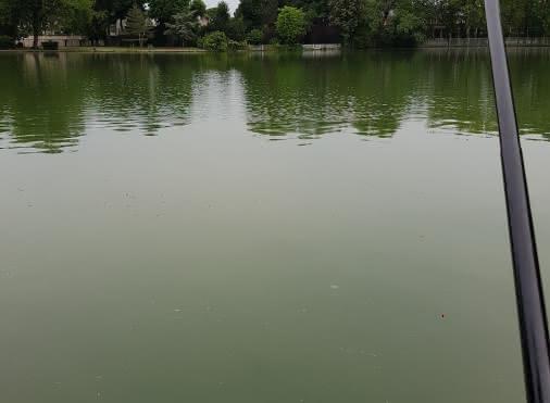 A.P.P.L.E - Association de pêche et pisciculture des lacs d'Enghien-les-Bains