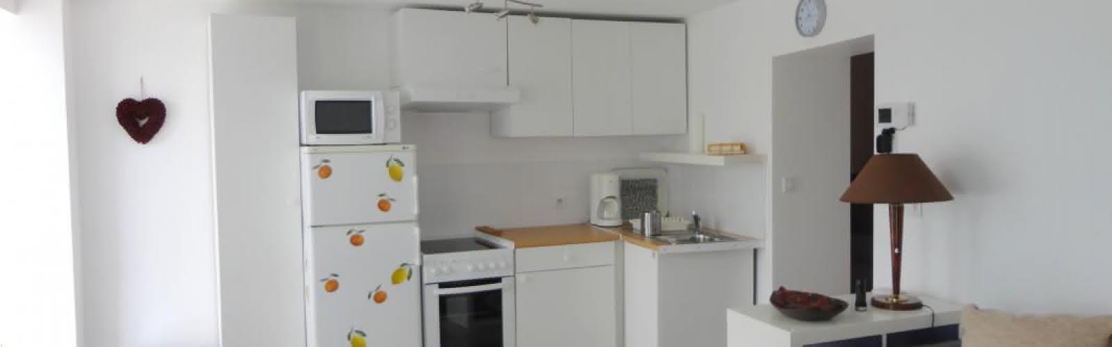 Cuisine ouverte équipée sur séjour, salon : micro-ondes, four, réfrigérateur avec compartiment congélateur, machine à café à dosette.