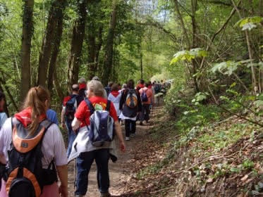 Photo d'un groupe de randonneurs en forêt, St Witz.