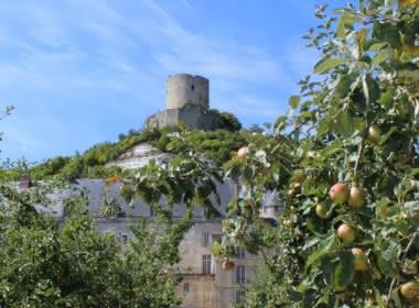 Photo prise depuis le jardin potager de la Roche Guyon, sous un pommier par un jour de grand soleil