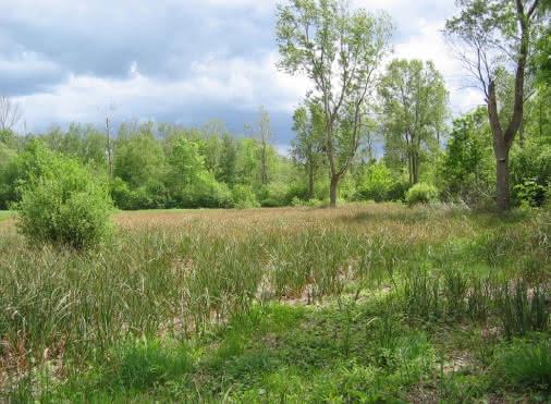Visite guidée : Aux sources du Sausseron