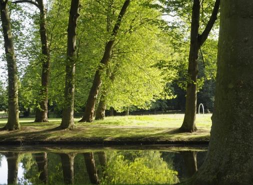 Miroir d'eau du parc de l'abbaye de Maubuisson