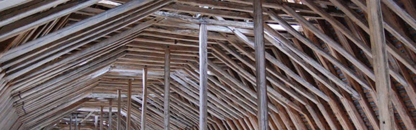 Les charpentes des cathédrales du XIII° siècle : de la forêt au chantier