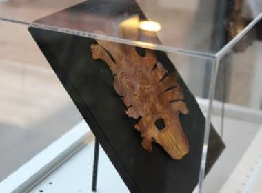 Photo prise au musée archéologique du Val d'Oise pendant l'exposition des Mochicas aux Incas