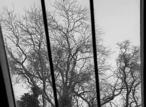 Exposition 'L'inaccessible de la maison Gachet', photographies d'Olivier Verley
