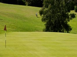 Golf Hôtel*** de Mont Griffon