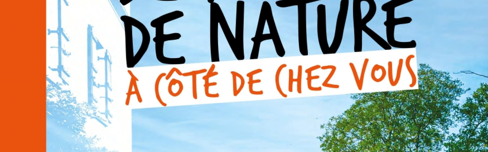 Affiche Sorties Nature Automne 2021