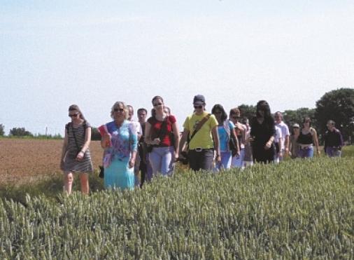 Visites guidées de l'office de tourisme d'Auvers-sur-Oise